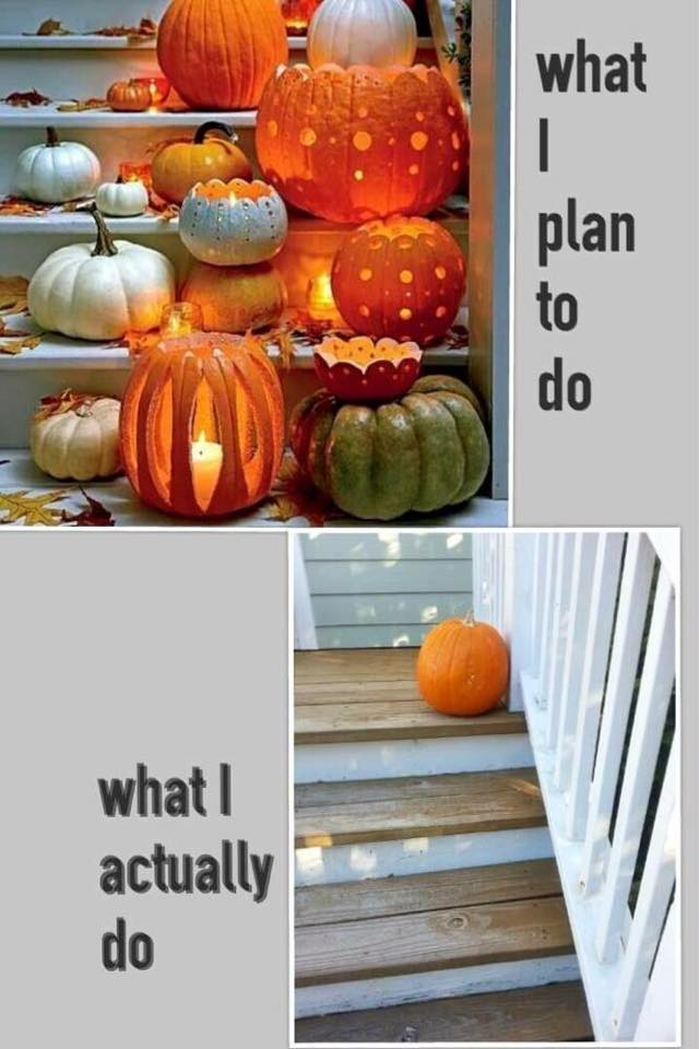 What I plan to do:actually do