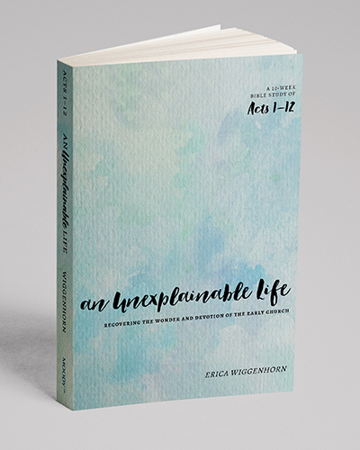 3D Mockup book cover of An Unexplainable Life by Erica Wiggenhorn