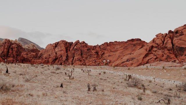 Desert Landscape Moses Teaching Video Series — Erica Wiggenhorn